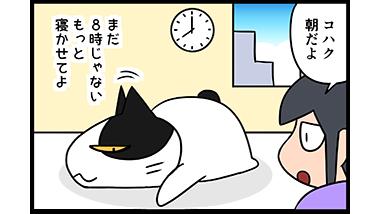 【猫マンガ-11話】起きる呪文