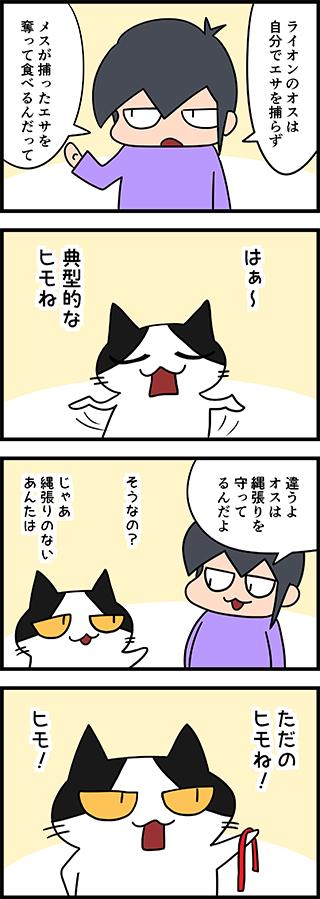 【猫マンガ-12話】ライオンのオス