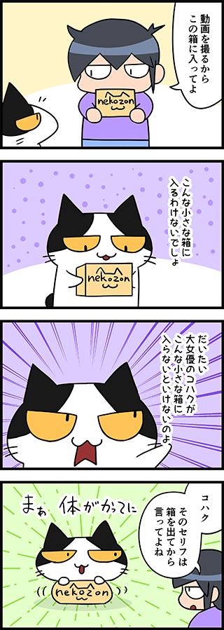 【猫マンガ-22話】小さな箱