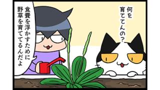 【猫マンガ-27話】野草を育てる