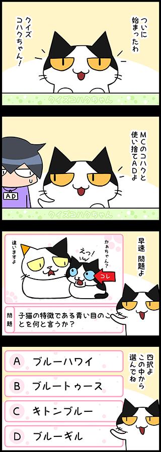 【猫マンガクイズ-第1問】子猫の特徴である青い目のことを何と言うか?