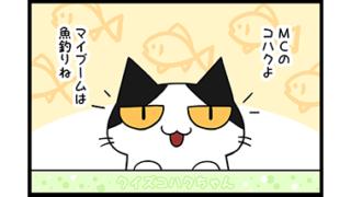 【猫マンガクイズ-第3問】アルファベットに隠れている猫の種類は?