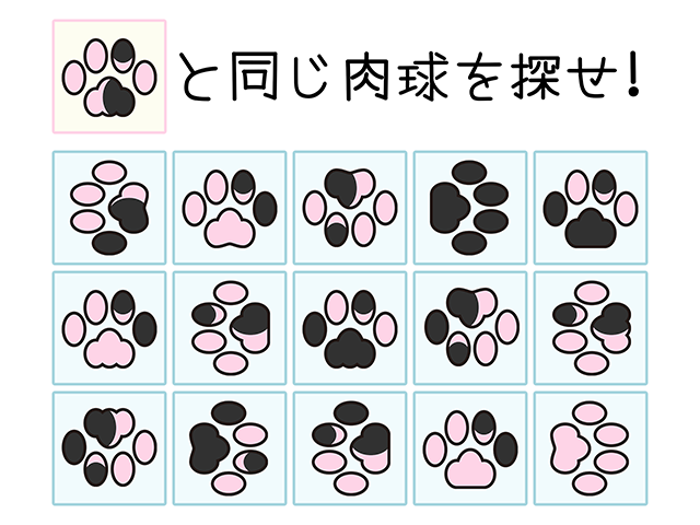 【猫クイズ-第5問】同じ肉球を探せ!