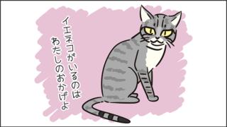 【猫クイズ-第18問】イエネコの起源である猫は?