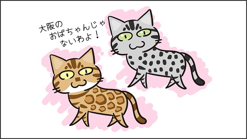 【猫クイズ-第33問】ベンガルはどっち?