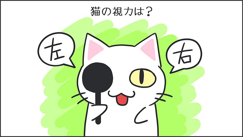 【猫クイズ-第43問】猫の視力は?
