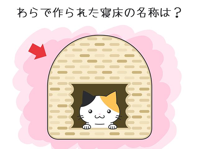 【猫クイズ-第46問】わらで作られた寝床の名称は?