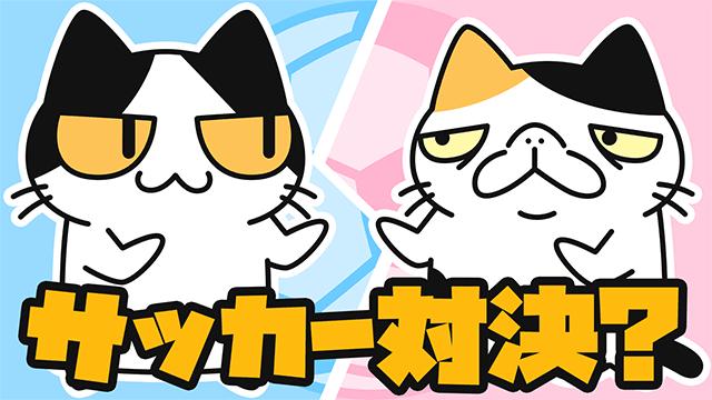 【YouTube猫アニメ#08】サッカー対決?(コハクちゃんねる)