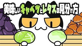 【YouTube猫アニメ#15】美味しいキャベツとレタスの見分け方(コハクちゃんねる)