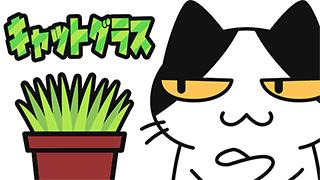 【YouTube猫アニメ#17】キャットグラス(コハクちゃんねる)