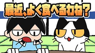 【YouTube猫アニメ#19】最近、よく食べるわね?(コハクちゃんねる)